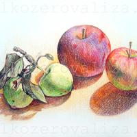 Елизавета Мелкозёрова, Мелкозерова Лиза, мелкозерова, Melkozerova, Elizaveta Melkozerova, melkozerovaliza, рисунок карандашами, цветные карандаши, рисунок цветными карандашами, яблоки, графика, рисунки Мелкозёровой, натюрморт с яблоками, картина с яблоками, яблоко