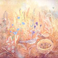 Елизавета Мелкозёрова, мелкозёрова, лиза мелкозерова, Мелкозерова Лиза, мелкозерова, Melkozerova, Elizaveta Melkozerova, melkozerovaliza, картина, картина с цветами, картина с птицей, картина Летний луг, теплая гамма, живопись для интерьера, живопись Мелкозеровой, пастельные тона, пастельный, картина в детскую, живопись темперой, темперная живопись